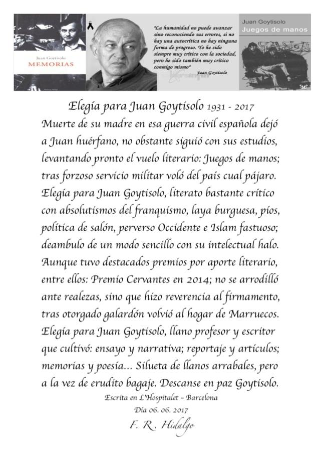 F. R . Hidalgo Elegía para juan Goytisolo - 1931 - 2017 .jpg