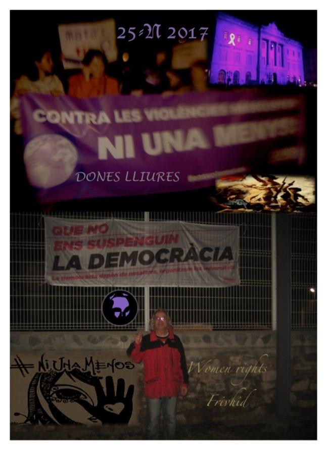 Solidaridad 25-N 2017 .jpg
