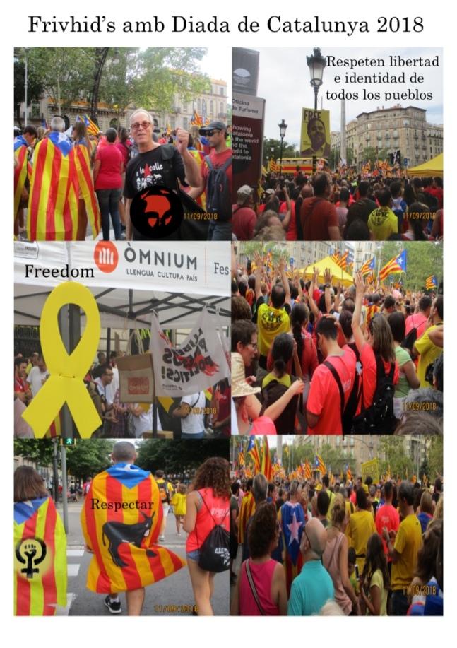 Diada de Catalunya 2018 .jpg