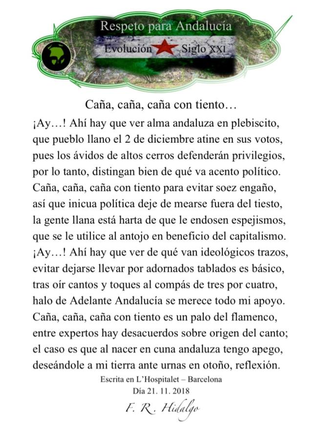 Respeto para Andalucía 2018 .jpg